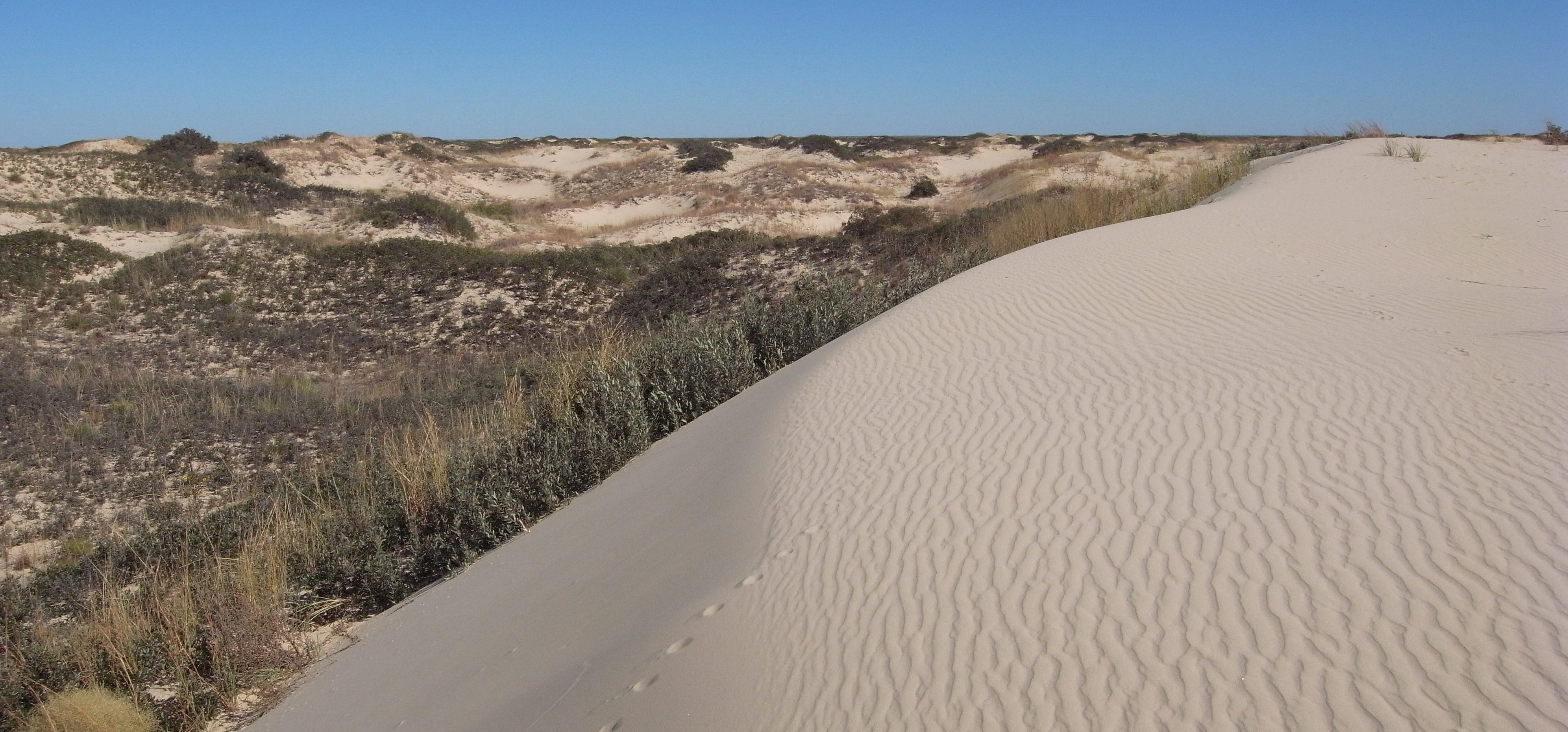 frack sand