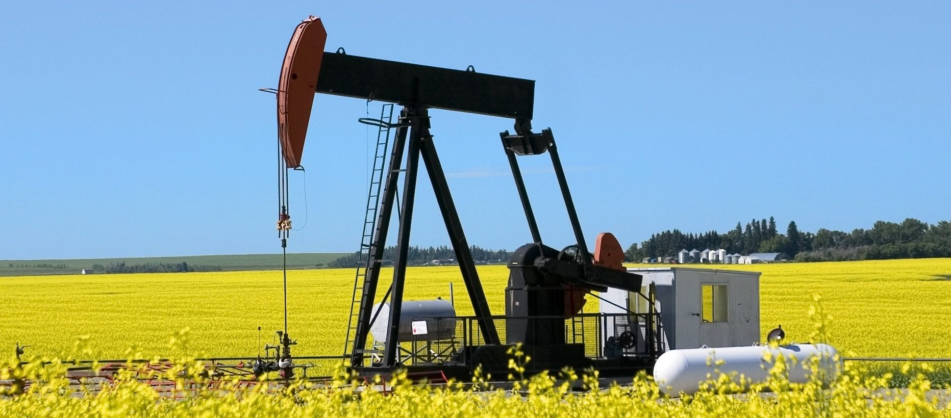 petrolia energy